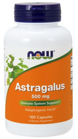 NOW FOODS Astragalus 500mg, 100caps. - Traganek